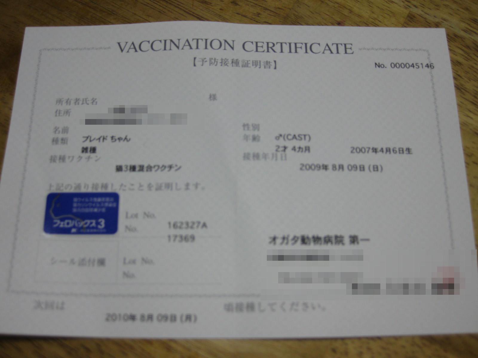 Img_30952
